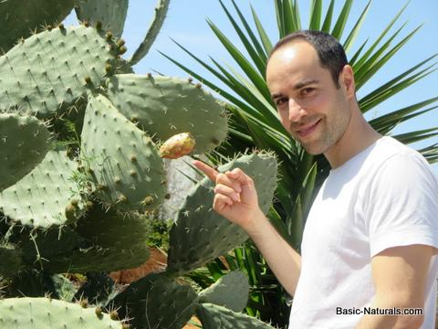 Prickly pear eczema