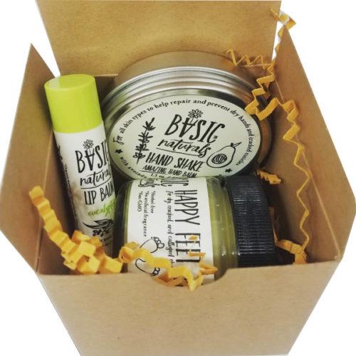 skin care holiday gift set - basic-naturals